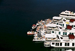 Houseboats gathered for a group event on Shasta Lake